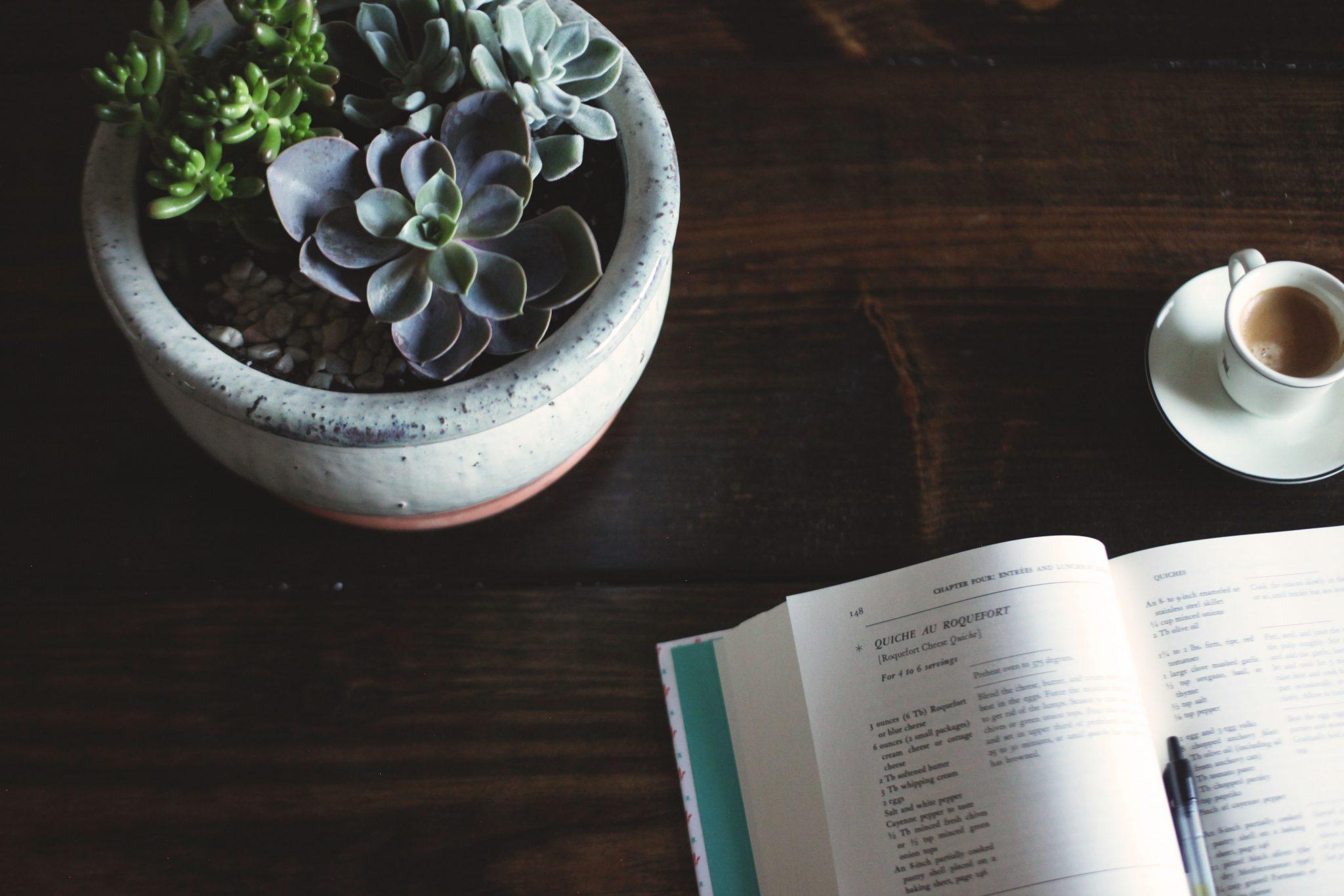 DIY Succulent Centerpiece - Tastemaker Blog