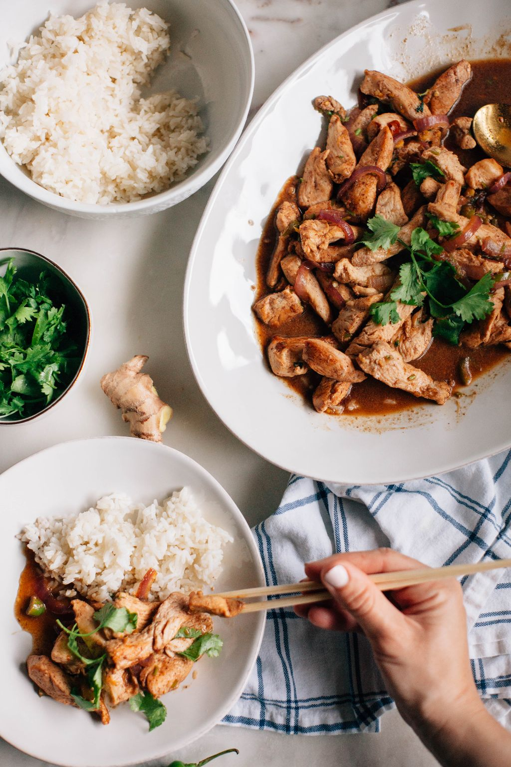 Spicy Burmese Chicken Stir Fry - Tastemaker Blog