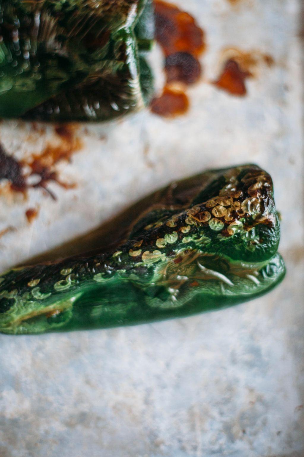 Chicken Tomatillo Stew - Tastemaker Blog
